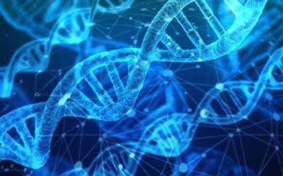 Menschenwürde ist unsere DNA
