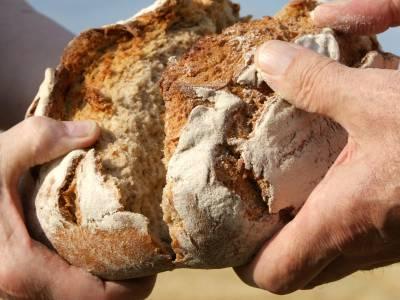 In deinem Brot