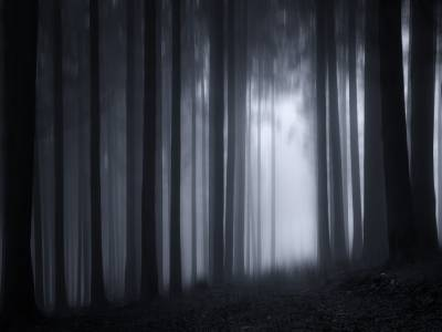 Schatten auf dem Leben des Petrus Canisius